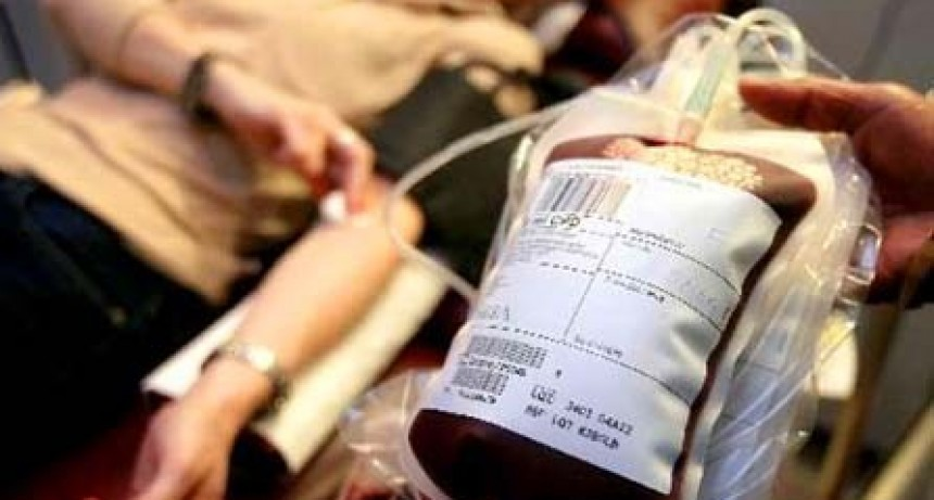 """Se necesita con urgencia 8 dadores de sangre """"0"""" negativo"""