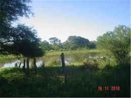 Vilelas: Hallan sin vida a una persona en una laguna entre Paraje Soto y Colonia Tacuarí