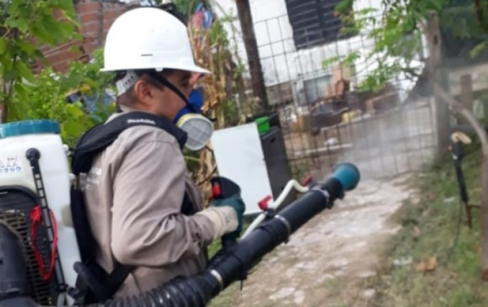 El Gobierno extrema medidas de bloqueo de focos y eliminación de criaderos de mosquitos