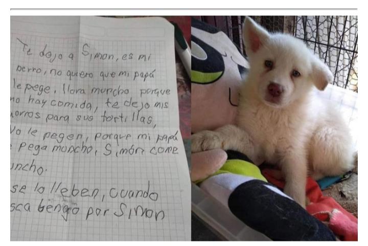 Para salvarlo de los golpes de su padre, un nene abandonó a su perrito junto a una carta