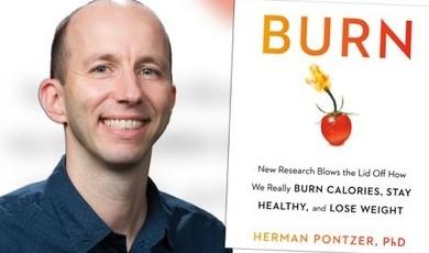 Un antropólogo evolutivo de EEUU revela por primera vez cómo funciona el metabolismo humano