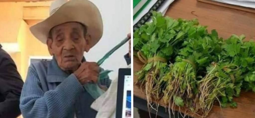 Un anciano no tenía dinero e intentó pagar con cilantro un trámite en el registro