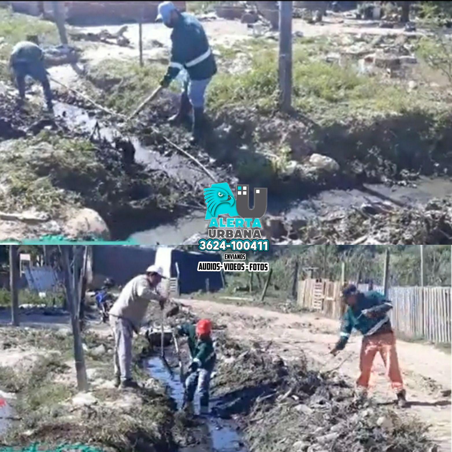 Resistencia: limpieza y zanjeo en Chacra 295