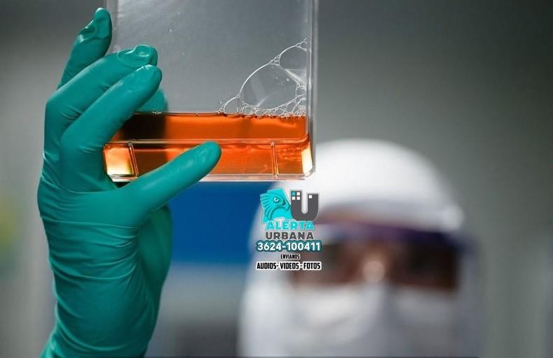 The Lancet: una revista publicó el estudio sobre suero equino hiperinmune