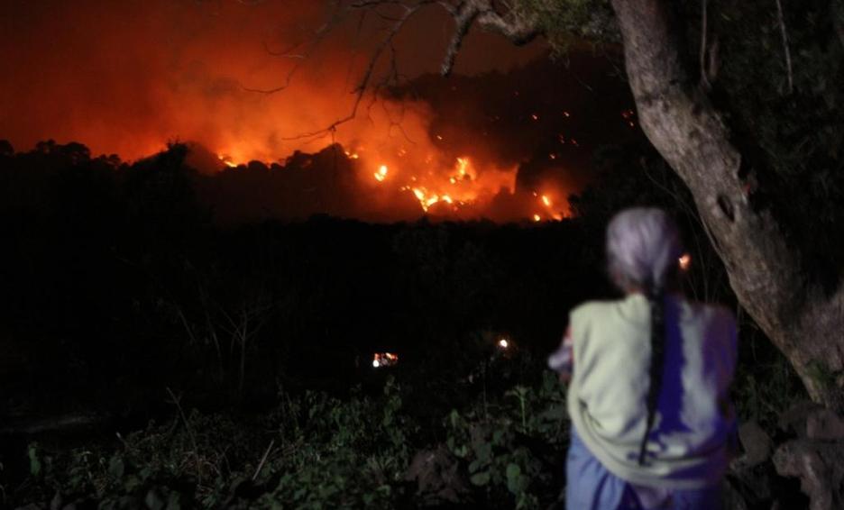 Mexico: un incendio consumió el bosque Tepoztlán