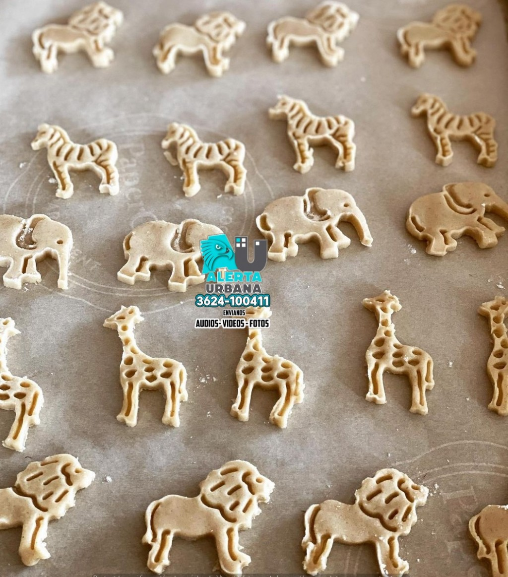 Galletas sin forma de animales