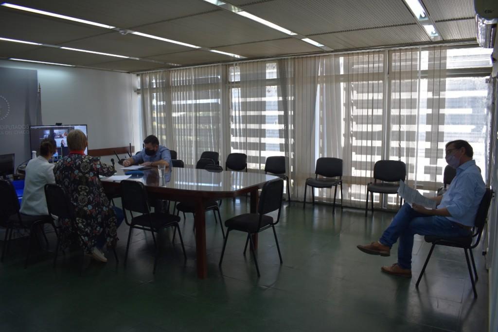 """Diputados aconsejan la creación del """"Programa Provincial de Esclerosis Múltiple"""""""