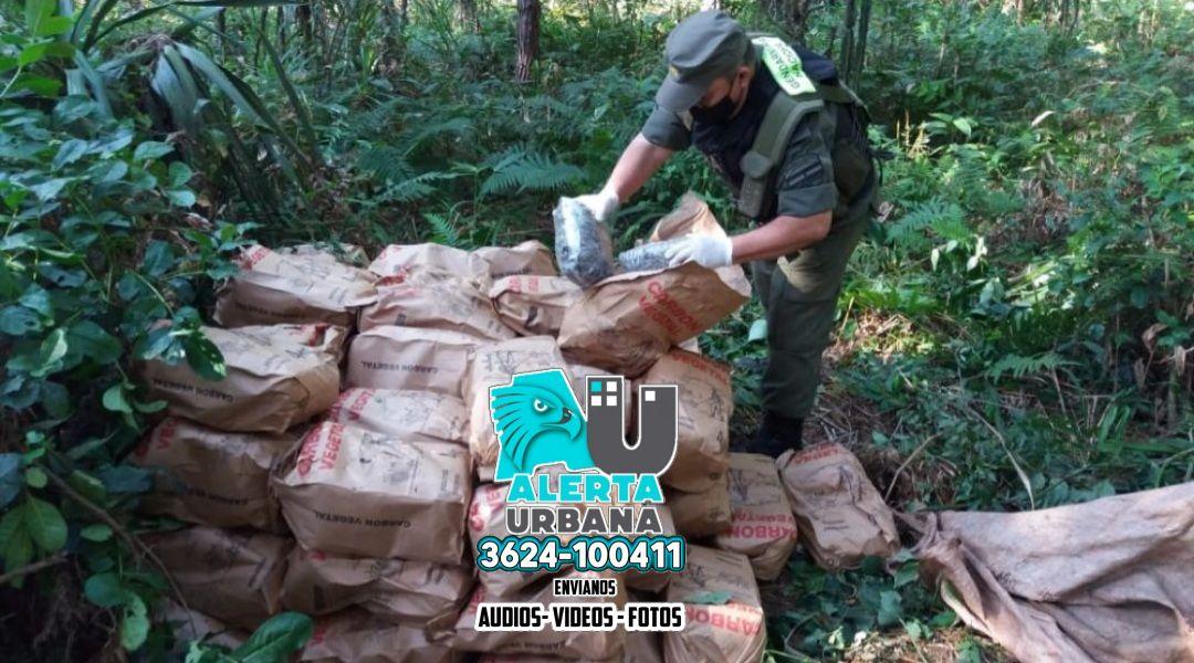 Interceptan más de media tonelada de marihuana en Corrientes