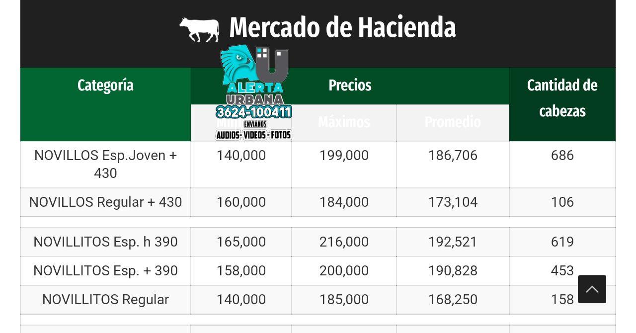 Mercado de Hacienda