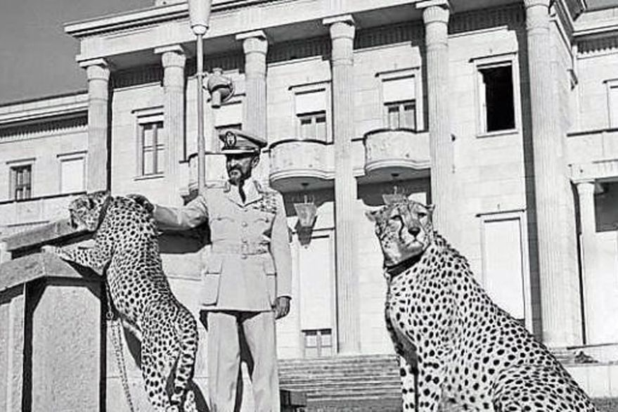 Haile Selassie, el emperador rodeado de guepardos que terminó enterrado en un sótano