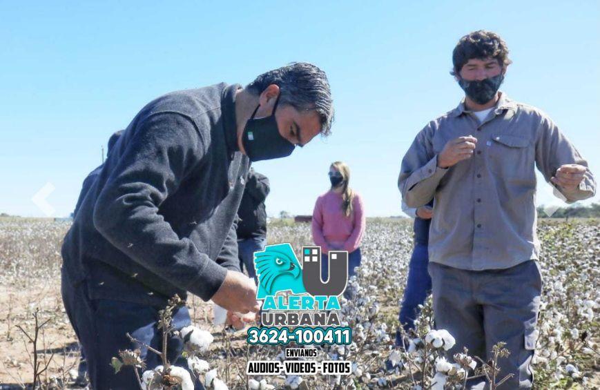 Capitanich visitó dos plantas industriales y un campo de algodón en el sudoeste