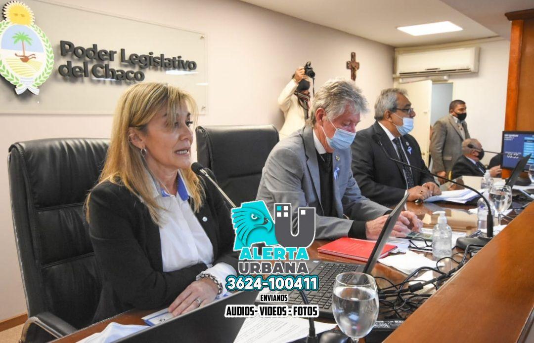 La ministra Torrente expuso ante Diputados