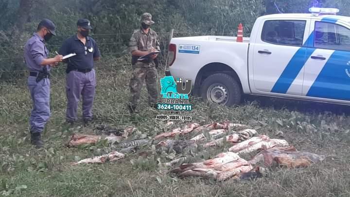 Isla del Cerrito: Atacaron a golpes a la Policía