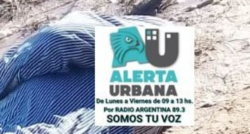 ULTIMO MOMENTO: encuentran muerto a Rubén Suárez, senador provincial y secretario general de la UTA – Corrientes