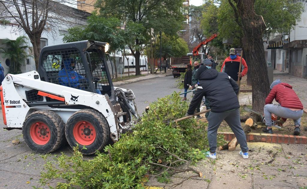 Nuevo operativo de poda y despeje de ramas en el macrocentro de la ciudad de Resistencia