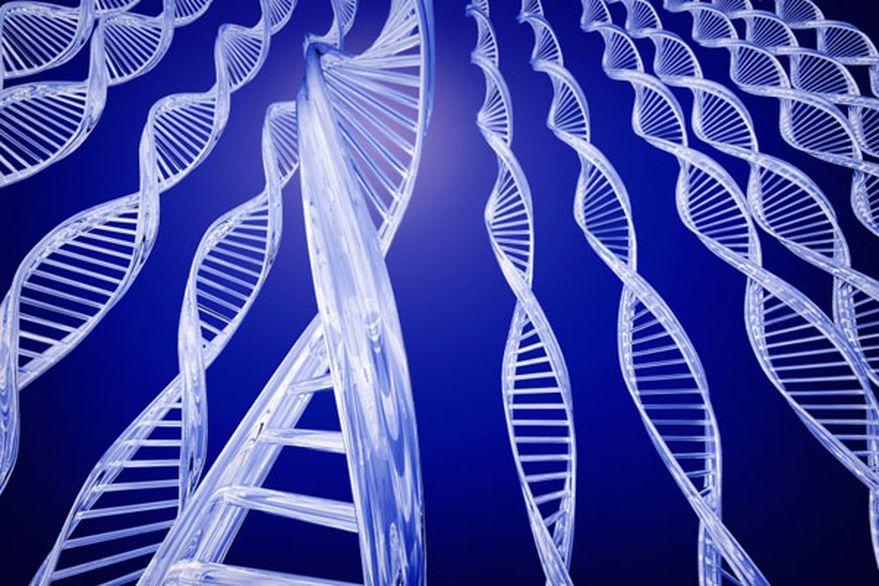 Secuencian por primera vez el genoma completo de un ser humano