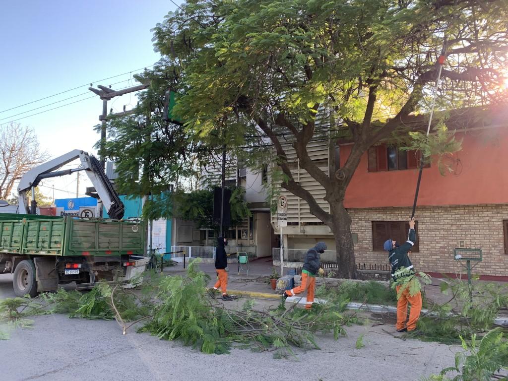 La Municipalidad realizó trabajos de poda controlada frente al Sanatorio Chaco Oeste