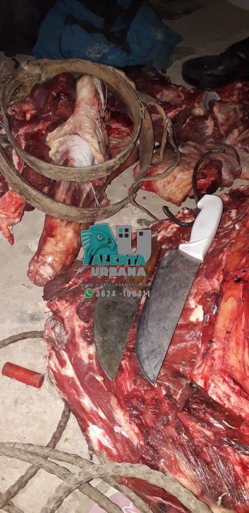 La Comisaria de Miraflores, esclareció un supuesto abigeato de ganado mayor.