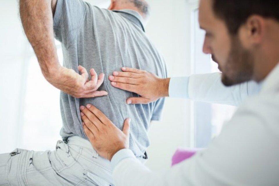 Científicas del Conicet logran regenerar el nervio ciático tras una lesión