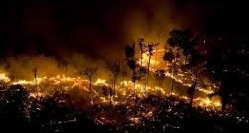 Incendio en Amazonas, cómo y con qué combatirlo