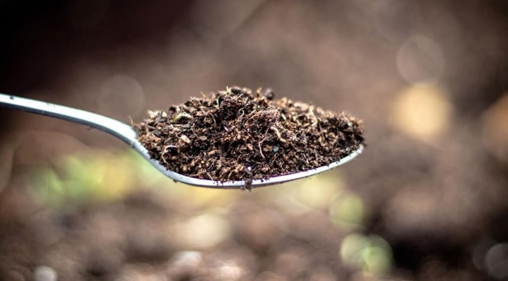 Comer tierra, el método más asombroso para adelgazar