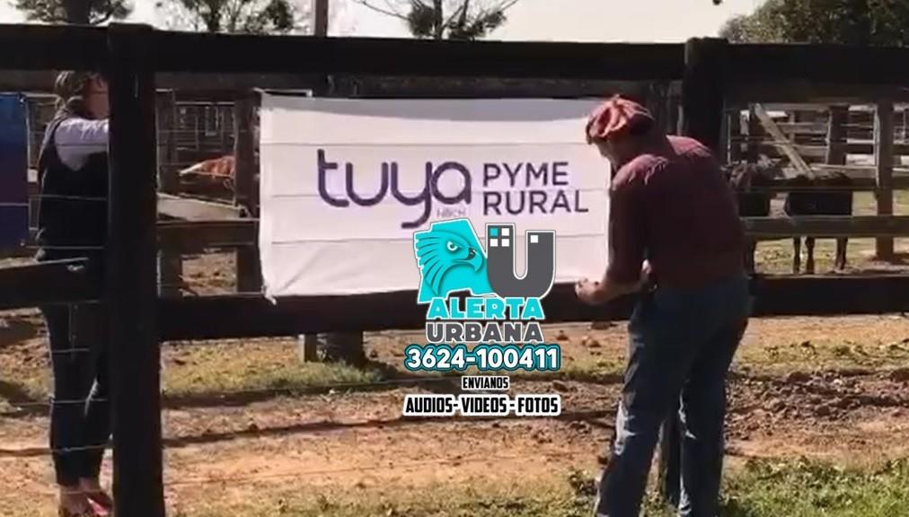 Tuya Pyme Rural impulsa la actividad ganadera con financiación en remates