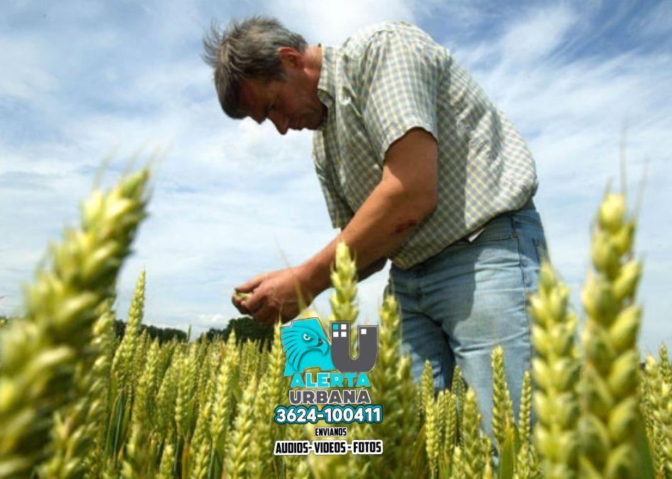 Día Nacional del Agricultor