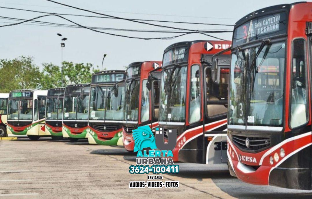 """Transporte público: """"Las líneas interurbanas funcionan correctamente"""""""