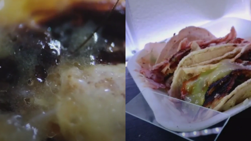 Grasa, pelos e insectos: un tiktoker analizó con un microscopio comida que se vende en la calle
