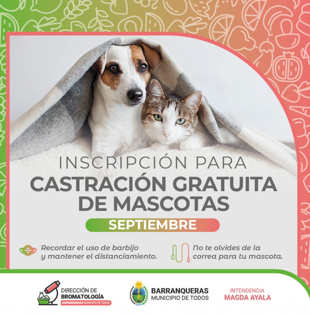Nueva campaña de castración gratuita en Barranqueras