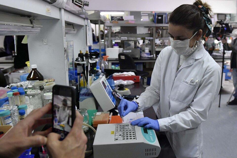 El Conicet incorpora 820 investigadores y alcanza un récord histórico