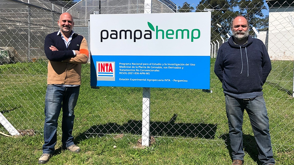 Una pyme comenzó a cultivar legalmente cannabis junto al INTA