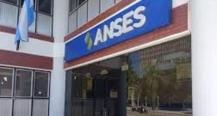ANSES: demoras en sistema de datos y encuestas a nivel nacional