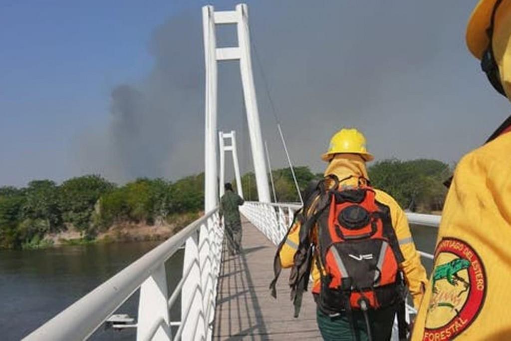 Indignante: en Santiago del Estero, quemaron una reserva ecológica y degollaron a dos gatos monteses