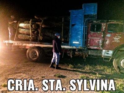 Encontraron un camión con siete toneladas de algarrobo abandonado en el monte