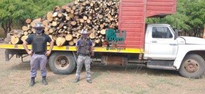 Avia Terai: un conductor fue demorado con gran cantidad de leña sin aval.