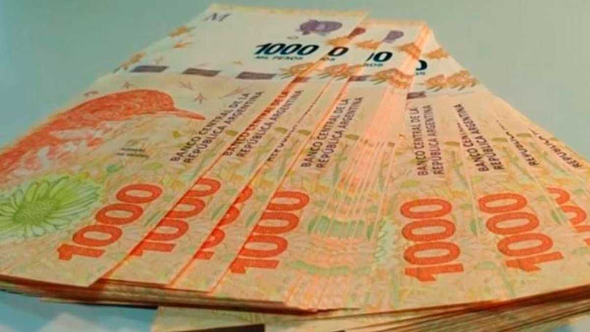 Nuevos instrumentos para estimular el ahorro en pesos