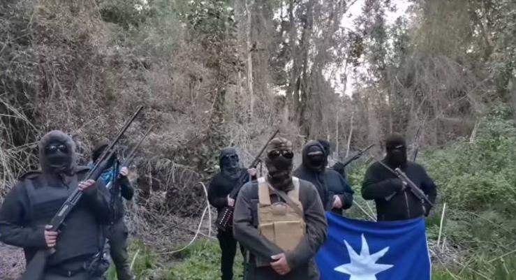 Chile: mapuches exhibieron armas y advirtieron que las usarán para defender un terreno en el sur