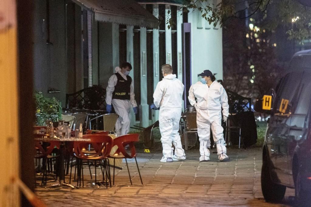 """Atentado en Viena: el Gobierno admite que haber liberado al terrorista fue """"sin dudas un error"""""""