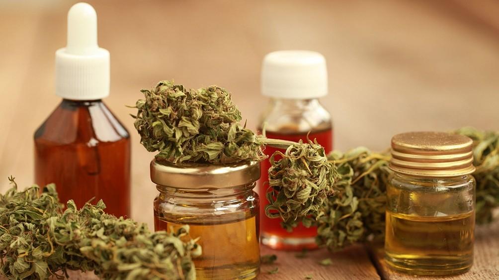 Debatirán una ley que autoriza el autocultivo de cannabis medicinal
