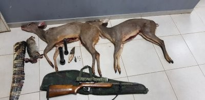 Detenidos con armas y animales faenados en Colonia Benítez